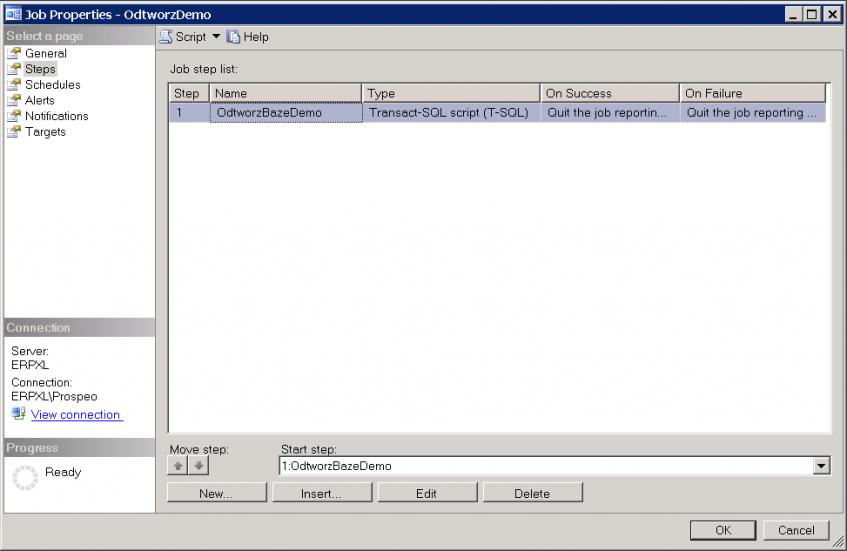 Dodatek ERP XL typu JOB SQL